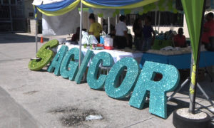SAGICOR.00_00_35_14.Still002